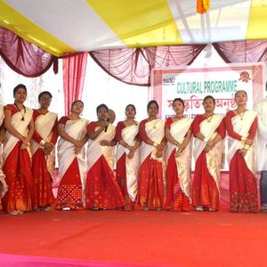 Cultural Function2017p
