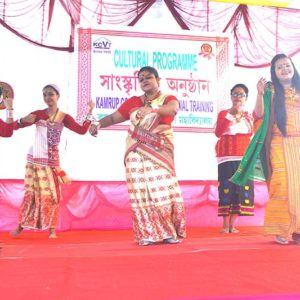Cultural Function2017z1