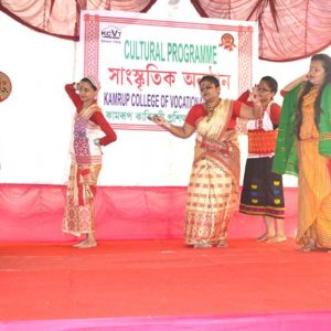Cultural Function2017z2