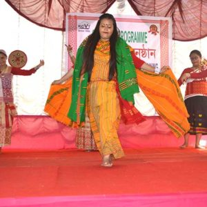 Cultural Function2017z3