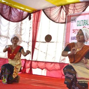 Cultural Function2017z7